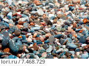Камни на пляже. Стоковое фото, фотограф Maria Siurtukova / Фотобанк Лори