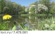 """Купить «Парк """"Екатерингоф"""" весной. Санкт-Петербург», видеоролик № 7478081, снято 25 мая 2015 г. (c) Звездочка ясная / Фотобанк Лори"""