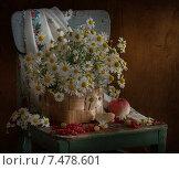 Корзина с ромашками. Стоковое фото, фотограф Елена Рубинская / Фотобанк Лори