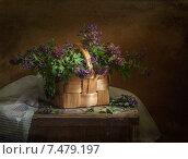 Первоцветы в корзинке. Стоковое фото, фотограф Елена Рубинская / Фотобанк Лори