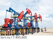 Купить «Нефтяные качалки», фото № 7493665, снято 12 июня 2010 г. (c) Георгий Shpade / Фотобанк Лори