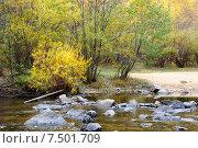 Купить «Река Никишиха. Забайкальский край», эксклюзивное фото № 7501709, снято 26 сентября 2007 г. (c) Александр Щепин / Фотобанк Лори