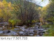 Купить «Река Никишиха. Забайкальский край», эксклюзивное фото № 7501733, снято 26 сентября 2007 г. (c) Александр Щепин / Фотобанк Лори