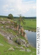 Одинокое дерево на скалистом берегу реки чусовая (2015 год). Стоковое фото, фотограф Андрей / Фотобанк Лори