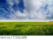 Купить «Облачное небо над зеленым полем», фото № 7532689, снято 2 июня 2015 г. (c) Сергей Эшметов / Фотобанк Лори