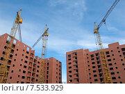 Купить «Три подъёмных крана над строящимися домами», эксклюзивное фото № 7533929, снято 8 июня 2015 г. (c) Svet / Фотобанк Лори