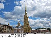 Санкт-Петербург. Петропавловский собор (2010 год). Стоковое фото, фотограф Дмитрий Муромцев / Фотобанк Лори