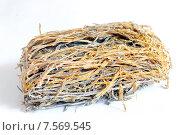 Купить «Сушеная морская капуста», фото № 7569545, снято 3 февраля 2011 г. (c) Iordache Magdalena / Фотобанк Лори