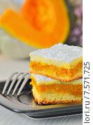 Тыквенный пирог. Стоковое фото, фотограф Iordache Magdalena / Фотобанк Лори