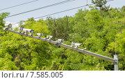 Камеры видеонаблюдения за дорожным транспортом. Стоковое фото, фотограф Вячеслав Сыпченко / Фотобанк Лори