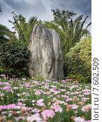 Купить «Красивый китайский сад», фото № 7602509, снято 1 ноября 2014 г. (c) Василий Кочетков / Фотобанк Лори