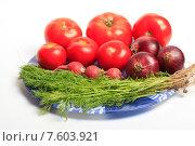 Свежий укроп, редис, помидоры и репчатый лук в синей тарелке на белом фоне. Стоковое фото, фотограф Яна Королёва / Фотобанк Лори