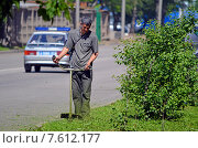 Купить «Рабочий стрижет траву на газоне около дороги ручной газонокосилкой - триммером», эксклюзивное фото № 7612177, снято 3 июня 2015 г. (c) Александр Замараев / Фотобанк Лори