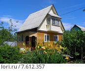 Купить «Деревянный дом на дачном участке в Московской области», эксклюзивное фото № 7612357, снято 7 июня 2015 г. (c) lana1501 / Фотобанк Лори