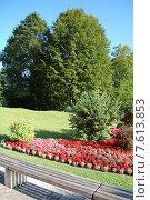Алая клумба в парке замка  Линдерхоф (2008 год). Редакционное фото, фотограф Ирина Семчук / Фотобанк Лори