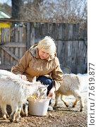 Женщина кормит козлят на ферме. Стоковое фото, фотограф Евгений Чернецов / Фотобанк Лори