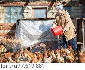 Женщина-фермер высыпает зерно курам. Стоковое фото, фотограф Евгений Чернецов / Фотобанк Лори