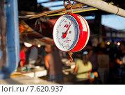 Весы на рыбном рынке (2014 год). Редакционное фото, фотограф Павел Нефедов / Фотобанк Лори
