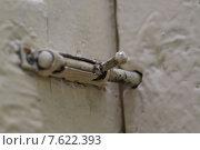 Купить «Дверь, закрытая на щеколду», фото № 7622393, снято 29 июня 2015 г. (c) Александр Толстоухов / Фотобанк Лори