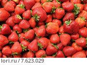 Купить «Фон из клубники», эксклюзивное фото № 7623029, снято 29 июня 2015 г. (c) Юрий Морозов / Фотобанк Лори