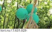 Купить «Зеленые воздушные шары и книга на фоне деревьев», видеоролик № 7631029, снято 30 мая 2015 г. (c) Aleksey Popov / Фотобанк Лори
