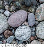Купить «Close-up of pebbles, Sally's Cove, Gros Morne National Park, Newfoundland And Labrador, Canada», фото № 7652685, снято 28 августа 2013 г. (c) Ingram Publishing / Фотобанк Лори