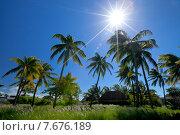 Купить «Тропический рай», фото № 7676189, снято 5 августа 2013 г. (c) Барковский Семён / Фотобанк Лори