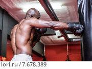 Купить «Young Bodybuilder boxing a bag», фото № 7678389, снято 13 февраля 2015 г. (c) Wavebreak Media / Фотобанк Лори