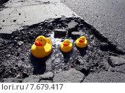 Купить «Berlin, Germany, Rubber Ducks sitting in a pothole», фото № 7679417, снято 8 марта 2011 г. (c) Caro Photoagency / Фотобанк Лори