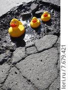 Купить «Berlin, Germany, Rubber Ducks sitting in a pothole», фото № 7679421, снято 8 марта 2011 г. (c) Caro Photoagency / Фотобанк Лори