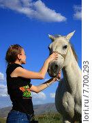 Купить «veterinary woman controling horse health», фото № 7700293, снято 18 июня 2019 г. (c) PantherMedia / Фотобанк Лори