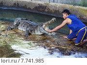Шоу крокодилов в Таиланде (2014 год). Редакционное фото, фотограф Andrei Leventcov / Фотобанк Лори
