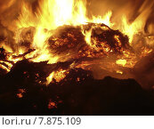 Купить «red black orange heat fire», фото № 7875109, снято 26 марта 2019 г. (c) PantherMedia / Фотобанк Лори