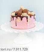 Кремовый торт с шоколадом. Стоковое фото, фотограф Елена Поминова / Фотобанк Лори