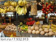 Купить «fruit shopping buy fruits eco», фото № 7932913, снято 19 июля 2019 г. (c) PantherMedia / Фотобанк Лори