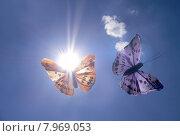 Купить «blue sky summer colour light», фото № 7969053, снято 17 ноября 2018 г. (c) PantherMedia / Фотобанк Лори