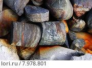 Купить «Буровой керн горных пород», фото № 7978801, снято 18 июня 2013 г. (c) Александр Алексеевич Миронов / Фотобанк Лори