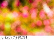 Разноцветный абстрактный фон с боке. Стоковое фото, фотограф Alexander Alexeev / Фотобанк Лори