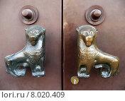 Купить «metal church door entrance goal», фото № 8020409, снято 22 июля 2018 г. (c) PantherMedia / Фотобанк Лори