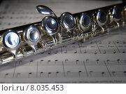 Купить «note notes flute centerpiece dullness», фото № 8035453, снято 26 мая 2018 г. (c) PantherMedia / Фотобанк Лори
