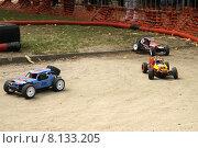 Купить «Гонки автомоделей», фото № 8133205, снято 21 июля 2015 г. (c) Эдуард Цветков / Фотобанк Лори