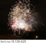 Купить «Фейерверк в ночном небе», фото № 8136625, снято 22 июля 2015 г. (c) Эдуард Цветков / Фотобанк Лори