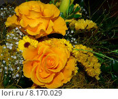 Купить «yellow plant flower flowers bouquet», фото № 8170029, снято 20 сентября 2018 г. (c) PantherMedia / Фотобанк Лори