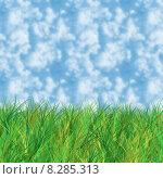 Купить «Grass and sky», иллюстрация № 8285313 (c) PantherMedia / Фотобанк Лори