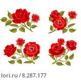 Розы, иллюстрация. Стоковая иллюстрация, иллюстратор Миронова Анастасия / Фотобанк Лори