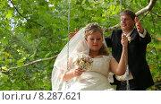 Купить «Жених раскачивает невесту на качелях», видеоролик № 8287621, снято 18 июня 2015 г. (c) Tatiana Kravchenko / Фотобанк Лори