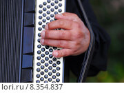Купить «instrument keyboard measure instruments concertina», фото № 8354837, снято 18 августа 2018 г. (c) PantherMedia / Фотобанк Лори