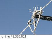 Купить «mast insulator traverse high tension», фото № 8365821, снято 23 мая 2019 г. (c) PantherMedia / Фотобанк Лори
