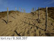 Купить «sand fence dunes sands sandweg», фото № 8368397, снято 23 марта 2019 г. (c) PantherMedia / Фотобанк Лори