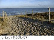 Купить «water sea ocean sand fence», фото № 8368437, снято 23 марта 2019 г. (c) PantherMedia / Фотобанк Лори